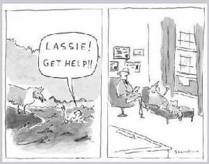 Lassie - Libra