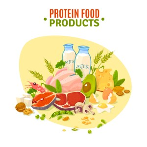 Protein Food Products Flat  Illustration Poster