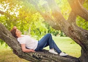 Sieste dans un arbre