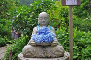 明月院 花想い地蔵と紫陽花