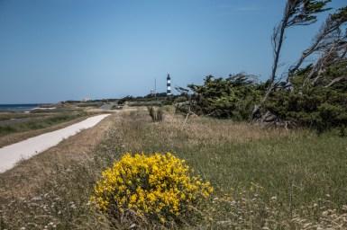 Marion-Prigent-Photographie-Madame-Voyage-Blog-voyage-La-Rochelle-2018-32