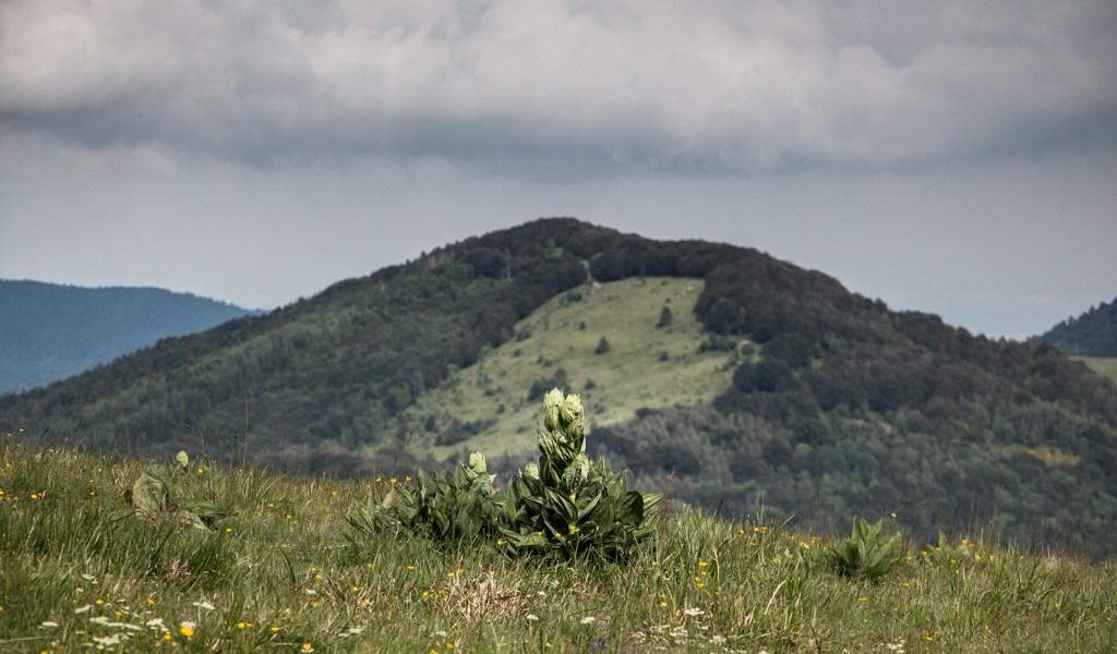 La Nuit des Refuges dans les Vosges Blog Madame Voyage