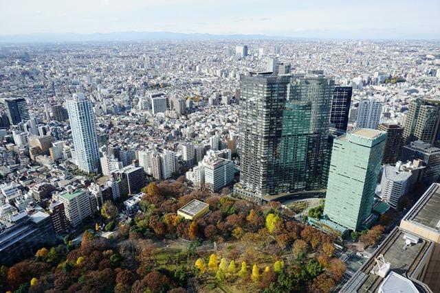 Dari atas Tokyo City Hall