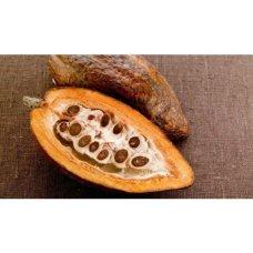 Гидролат Какао-бобов