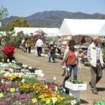 広島春のグリーンフェア2018花と緑の広場アクセス駐車場案内