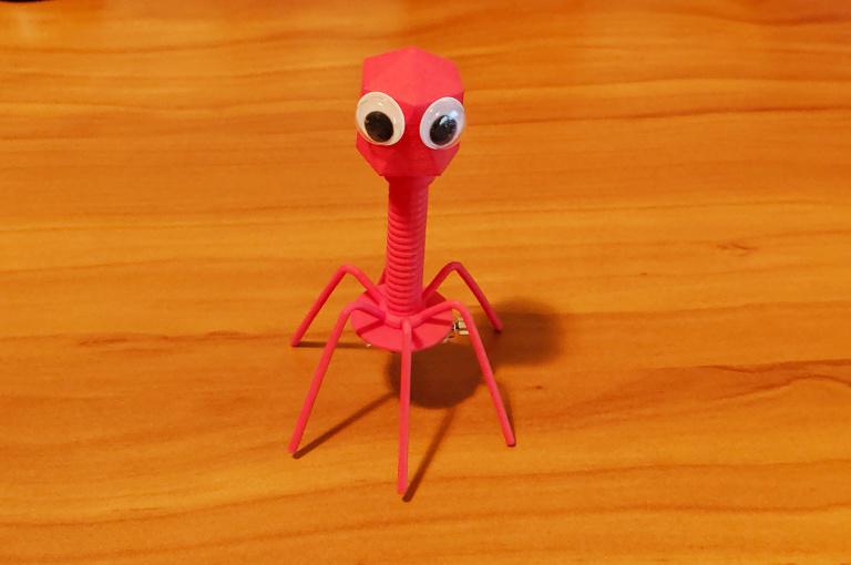 Bacteriophage Redux