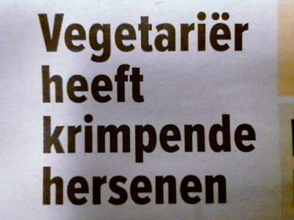 vegetarier-zijn-dom.jpg