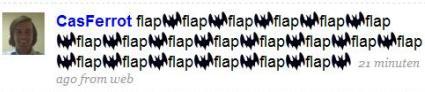 flap-flap.JPG