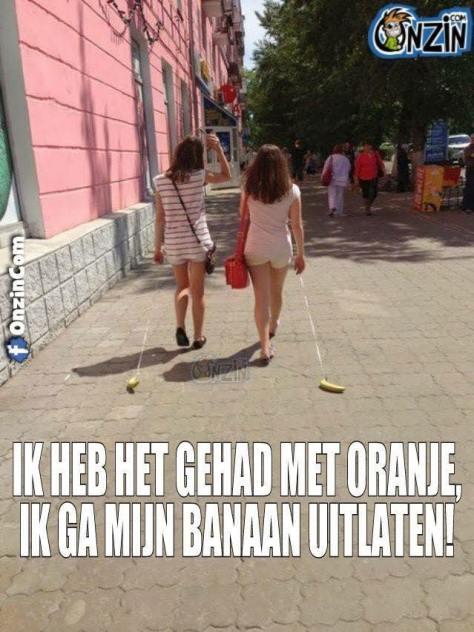 Oranje humor 2016 (12)