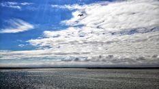 snap zeeland (8)