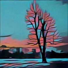 4 foto bewerkt met prisma (3)