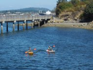 kayakers on Bellingham Bay