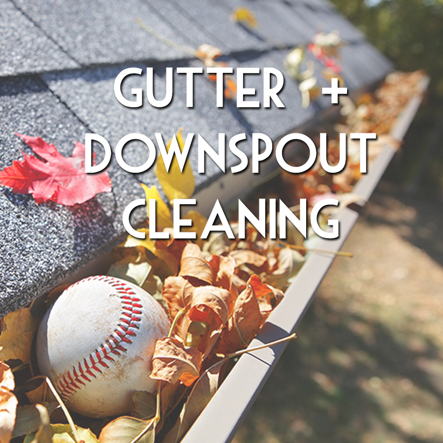 Gutter + Downspout Cleaning