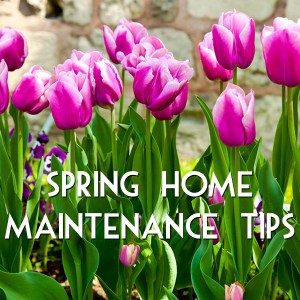Spring Home Maintenance