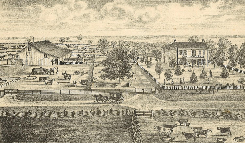 D.B. Gillham's stock farm