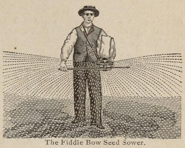 illustration of a fiddle bow seed sower