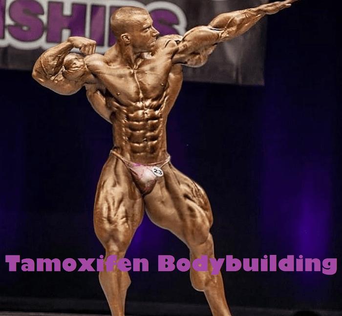Tamoxifen-Bodybuilding
