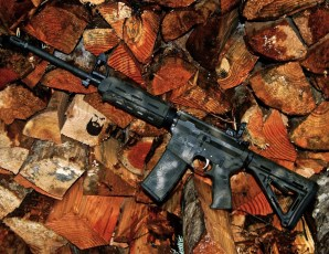 Fort Discovery AR15 in 3 color MAD Dragon Camo