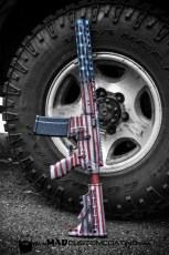 Sig AR15 in War Torn America Theme