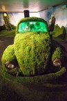 The Car Garden: inspired by several of Dali's works.