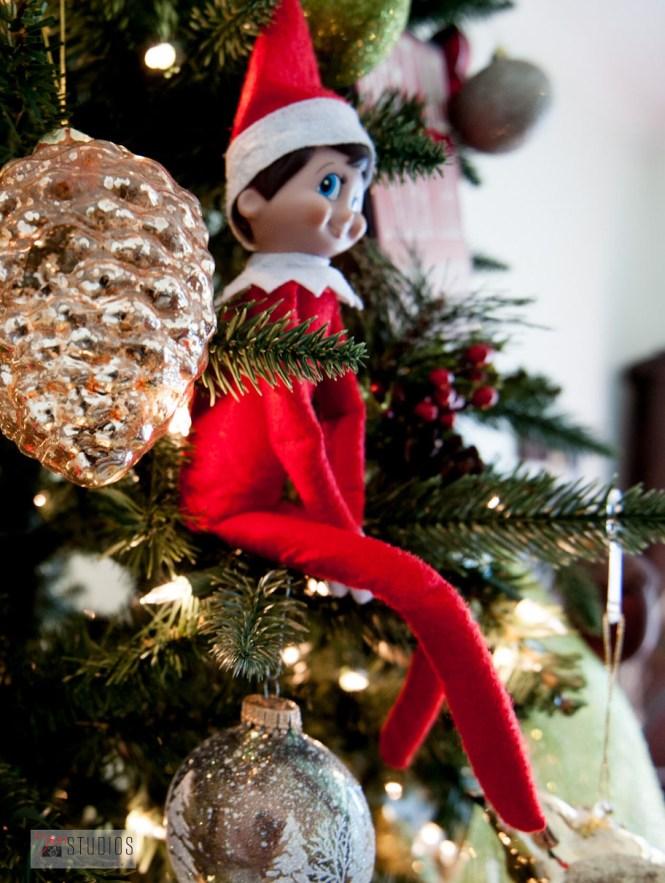 Elf in a treeee