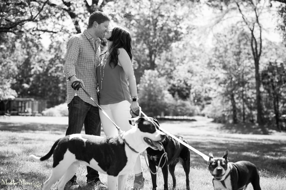 Heartwood Hall Dog Engagement