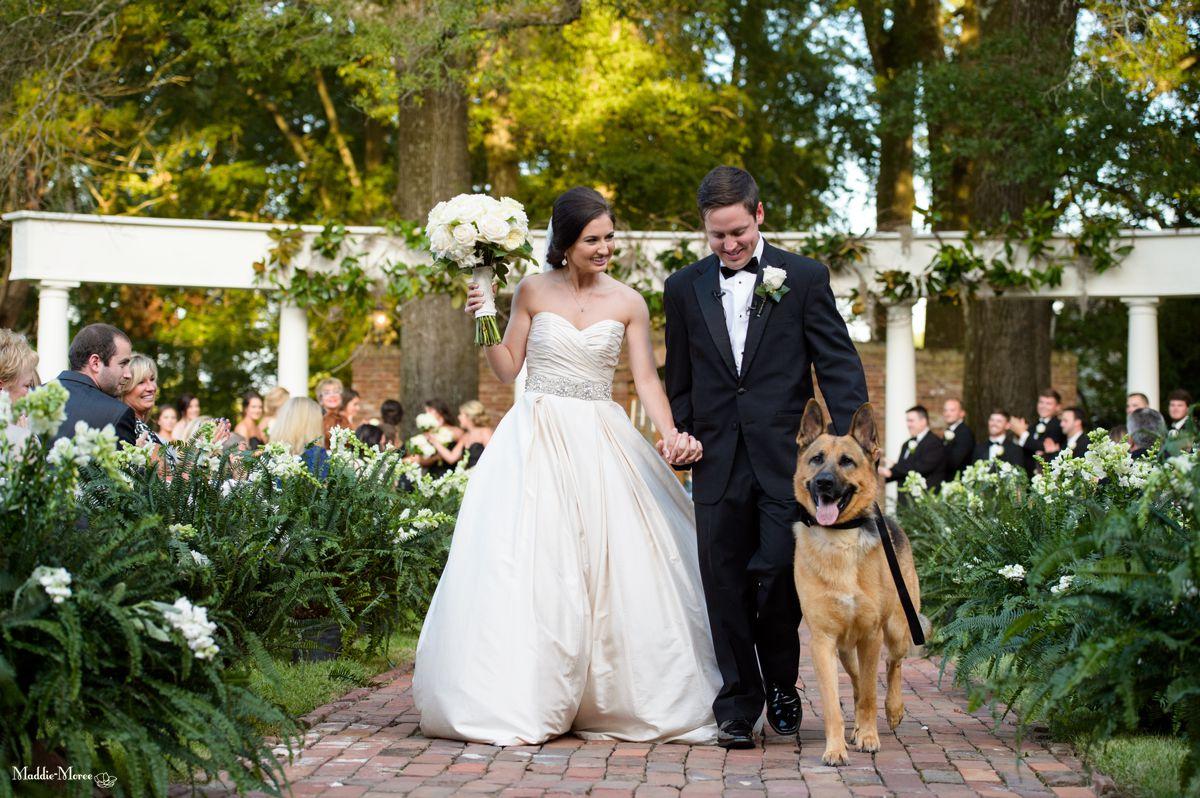 Cedar Hall_maddie moree_wedding 18
