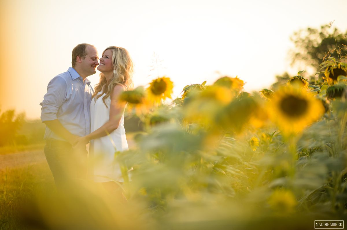 engagement session at a sunflower field