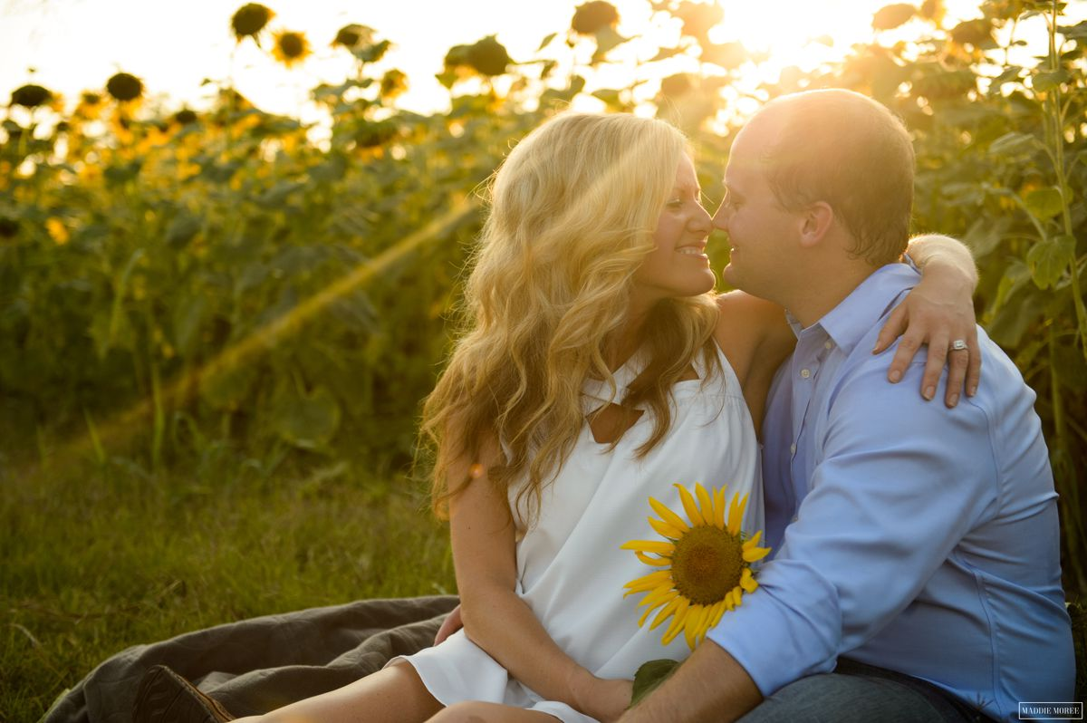 maddie moree engagement sunflowers
