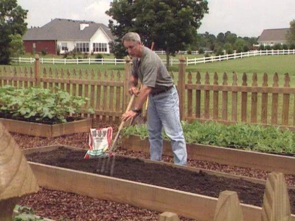 image2-1   Как посадить перцы, чтобы получить хороший урожай