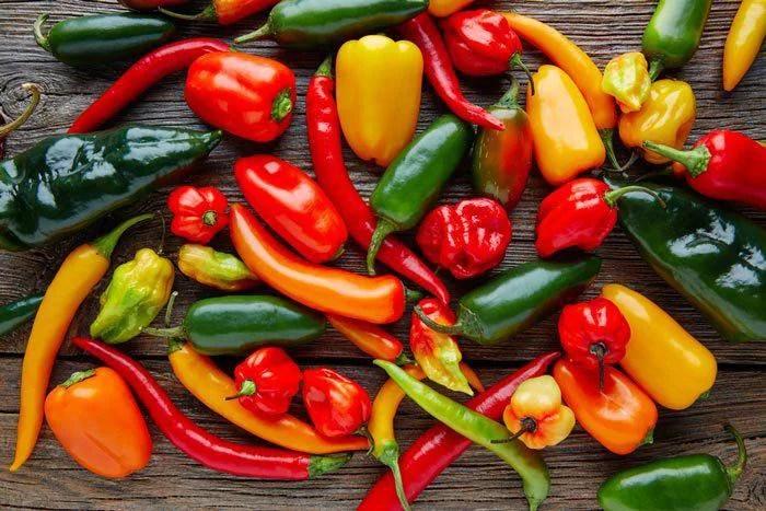 image6   Как посадить перцы, чтобы получить хороший урожай