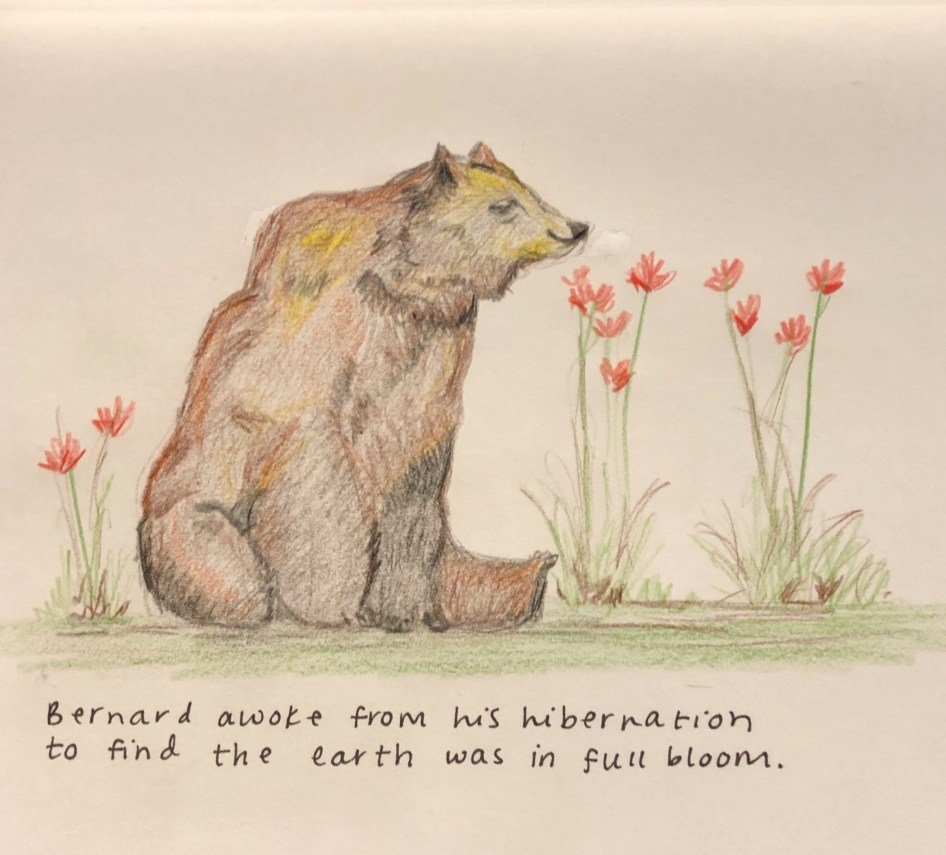 Bernard the Bear
