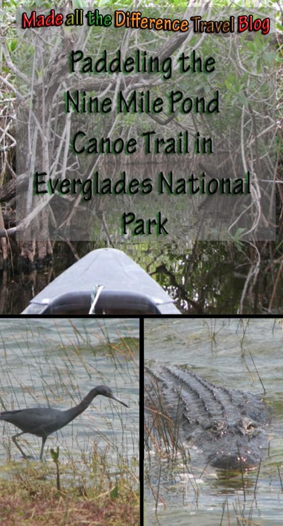 paddle the Nine Mile Pond Canoe Trail