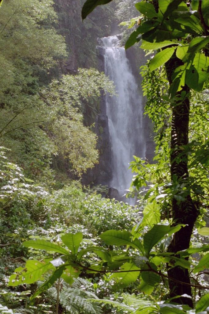 Spotlight Thursday - Seeing the twin falls of Trafalgar Falls