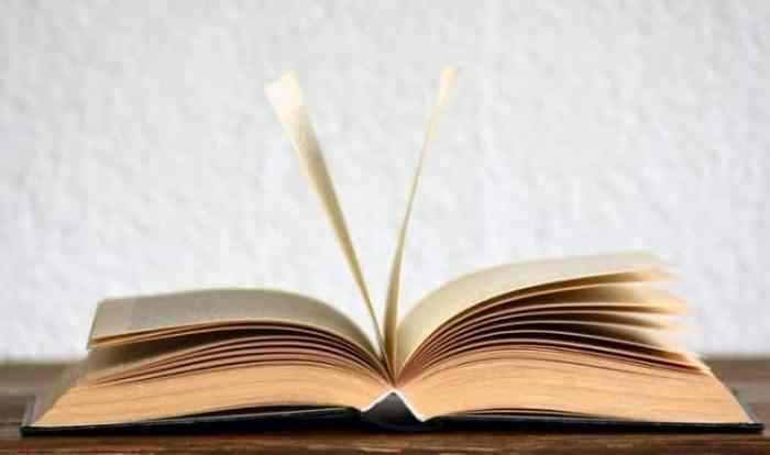 Struktur Batin Puisi