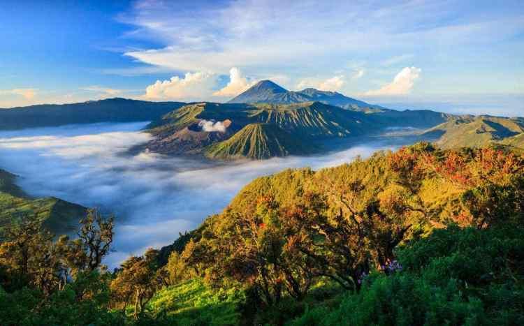 Lingkungan Hidup Indonesia