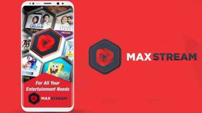 Maxstream