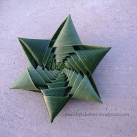 How to make coconut leaf star