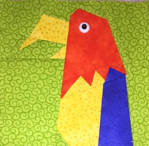 Macaw top photo