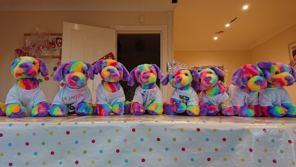 DIY teddy party Rainbow dog teddies lined up in t-shirts