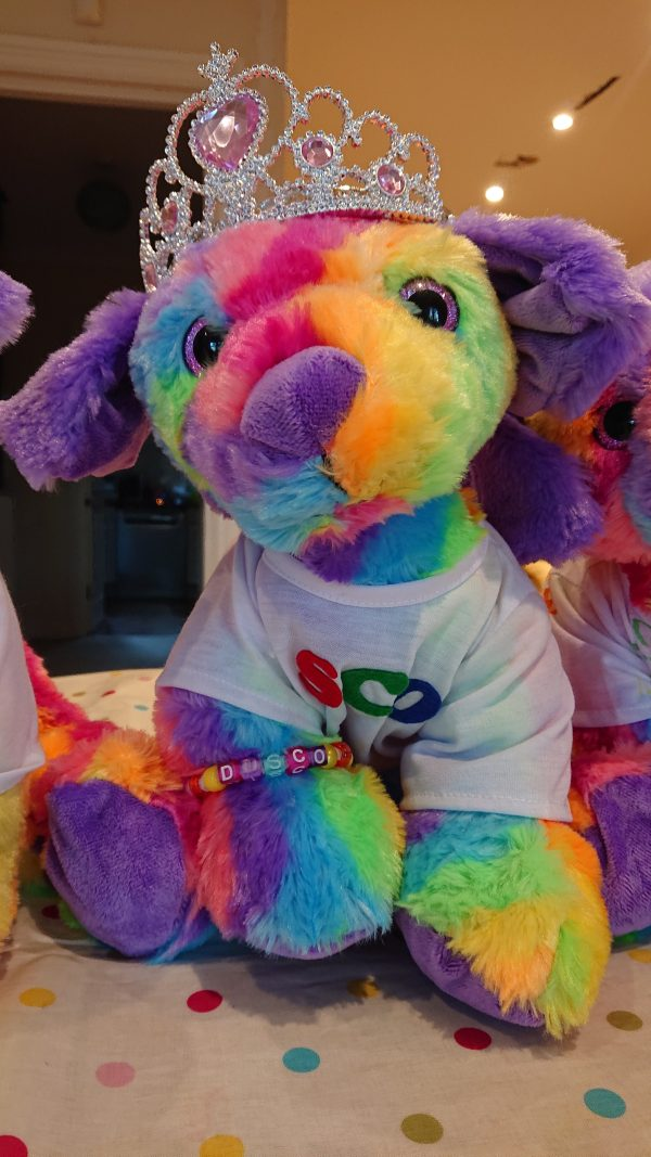DIY teddy party - Rainbow dog teddy making kit with t-shirt and crown