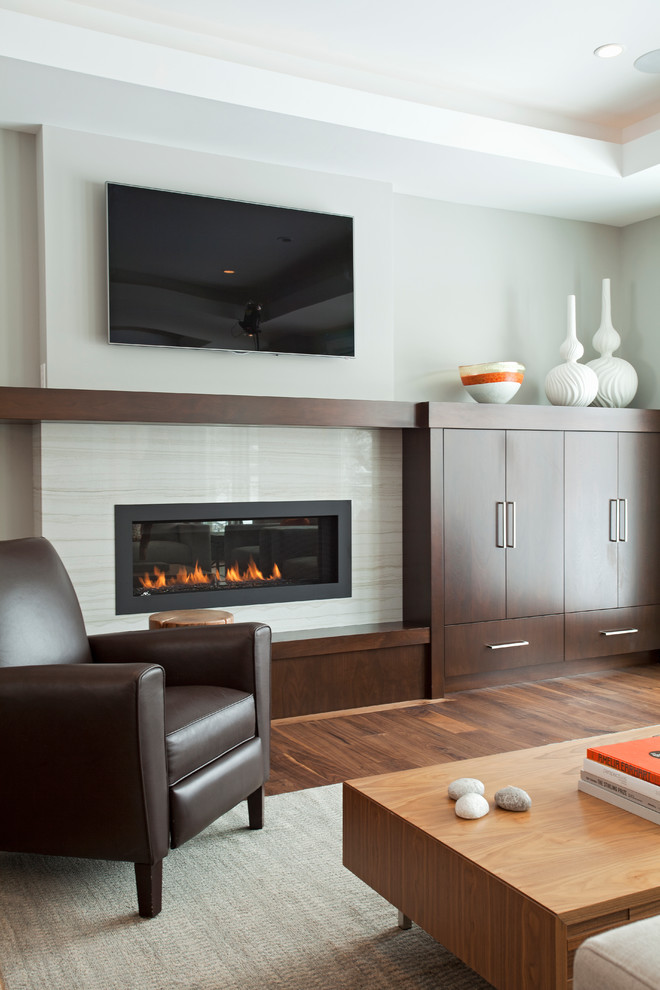 Dazzling Napoleon Fireplace In Living Room Contemporary With Marble Substitute Next To Ikea