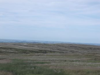 The moors, on the top near home.
