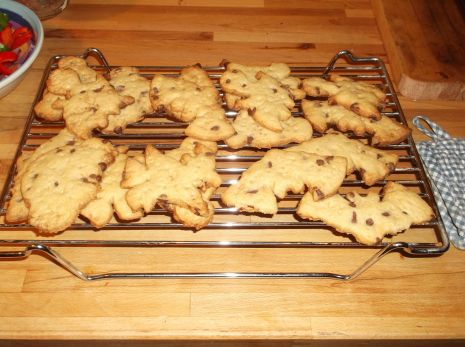 choc chip biscuits
