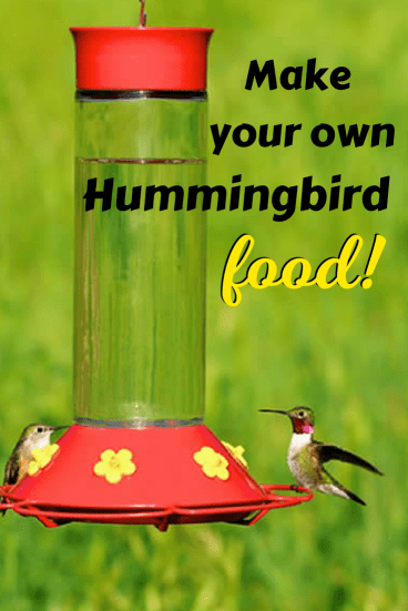 Make your own hummingbird food to attract these amazing birds to your yard. For more tips and recipes visit Made in a Pinch and follow us on Pinterest!