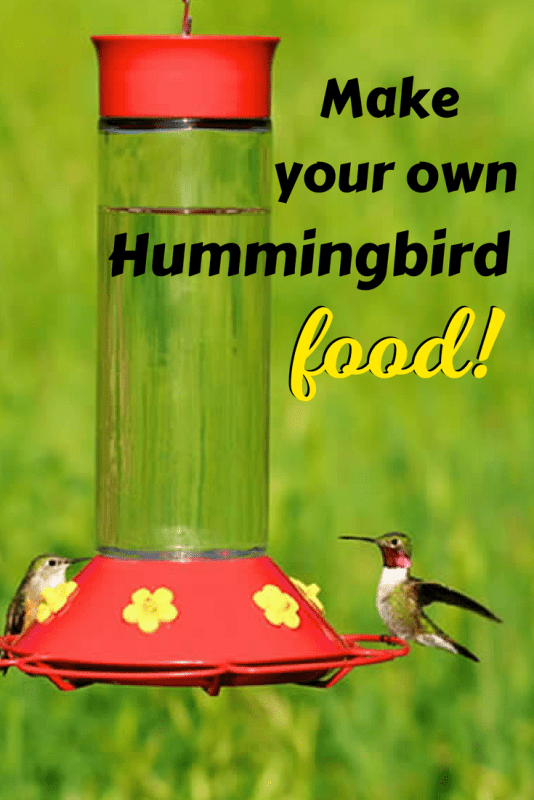 Make homemade hummingbird food to attract these amazing birds to your yard!