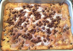 Completed chocolate chip cake