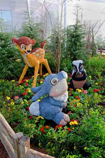 Disney World animals