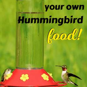 cropped-Hummingbird-food.png