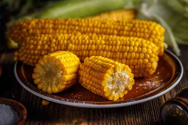 cooking corn in the microwave is quick and easy for these corn cobs sitting on a plate